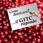 Base GITC risponde 01