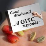 Base GITC risponde 09