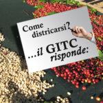 Base GITC risponde 19